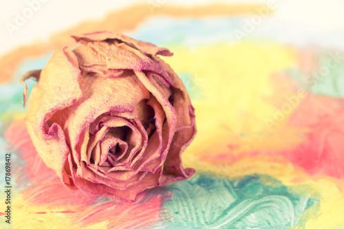 Plakat Suchy pączek róży na abstrakcyjnym obrazie