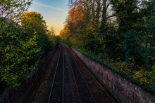 An Empty Railway Lined With Tr...