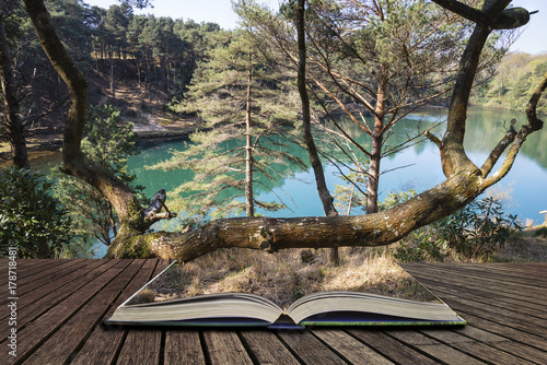 Poster Cappuccino Beautiful vibrant landscape image of old clay pit quarry lake with unusual colored green water concept coming out of pages in open book