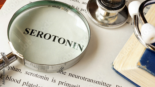 Serotonin written on a page. Human hormones. Wallpaper Mural