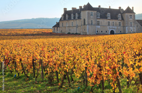 Papiers peints Con. ancienne Vignes et château du clos de Vougeot