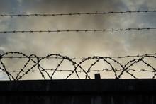 Barbed Wire On Dark Fence.