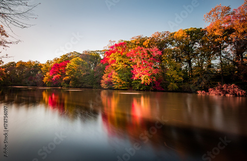 In de dag Bomen Fiery fall colors reflect their brilliance in a pond.