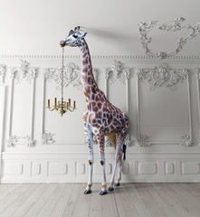 Fototapetathe giraffe hold the chandelier