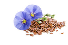 Beautiful Flowers Of Flax With...