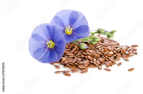 Beautiful flowers of flax with seeds isolated  on white backgroumd