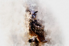 Beautiful Painting Art Waterco...