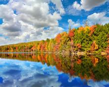 Landscape Of Autumn Colored Tr...