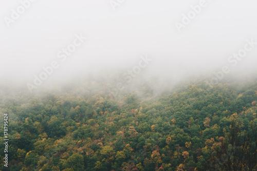 Printed kitchen splashbacks Khaki View of foggy mountains with trees