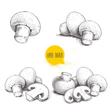 Hand Drawn Sketch Style Champignon Mushroom Composition Set. Whole And Slice Cuts. Vector Farm Fresh Food Collection  Isolated On White Background.
