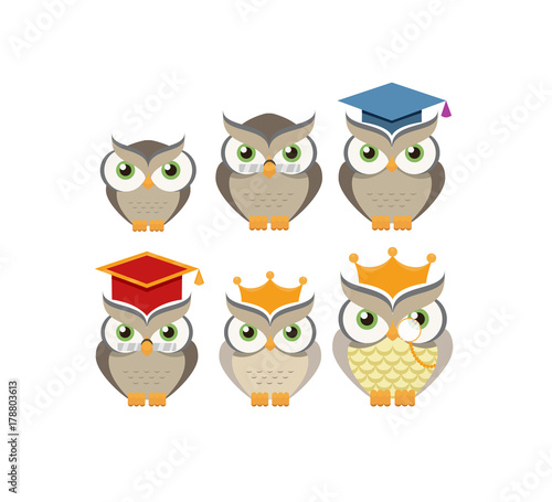 Photo Stands Cartoon owl character collection. Vector illustration.