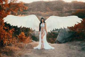 Piękny biały archanioł zstąpił z nieba. Dziewczyna w seksownym garniturze z ogromnymi białymi skrzydłami. Fotografia artystyczna