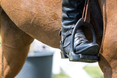 La pose en embrasure Equitation Springpferd