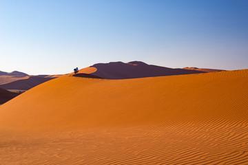 Fototapeta na wymiar Tourist walking on the sand dunes at Sossusvlei, Namib desert, Namib Naukluft National Park, Namibia. Traveling people, adventure and vacations in Africa.