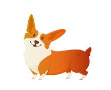 Happy Dog Welsh Corgi. The Sty...