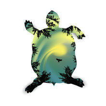 Silhouette Of Running Turtle With Coniferous Trees On The Background Of Colorful Sky.  Northern Lights. Green And Yellow Tones.