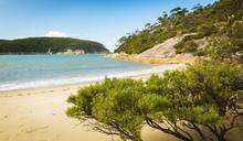 Refuge Cove Beach