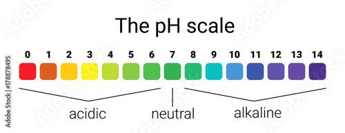 Photo ph scale
