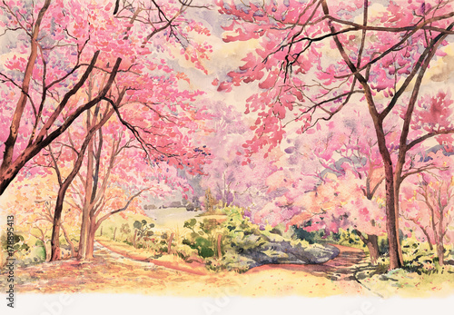 Tuinposter Lichtroze Painting Wild himalayan cherry roadside in the morning