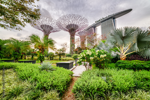 Spoed Foto op Canvas Singapore Scenic view of Gardens by the Bay in Singapore