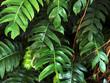Big Tropical Leaves pattern