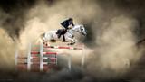 Fototapeta Konie - White horse