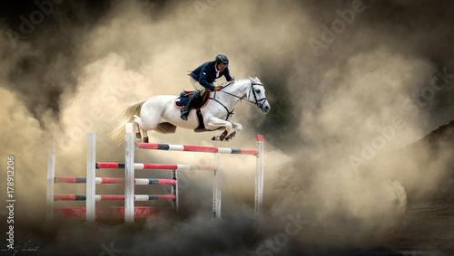 Foto op Canvas Paarden White horse