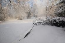 After An Overnight Snowstorm, ...