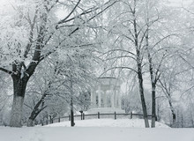 Winter Nature, Pavilion And Sn...