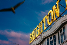Seagulls Fly Around A Sign For Brighton, UK.