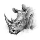 twarz malowane nosorożec zwierząt na białym tle - 178969089