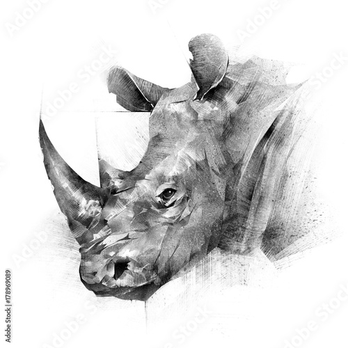 Fényképezés  face painted rhinoceros animal on white background