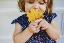 Cute Girl Playing With Maple Leaf