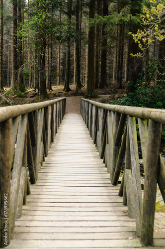 Photo  Wooden bridge over the Shimna River, Northern Ireland, as featured in a scene fr