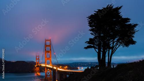 widziany-z-oddali-most-golden-gate-i-sylwetka-drzewa-na-pierwszym-planie