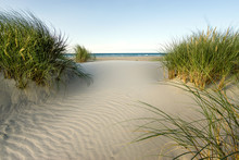 Beach With Sand Dunes And Marr...