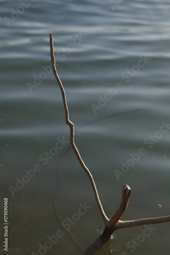 Poster Peche Lake stick