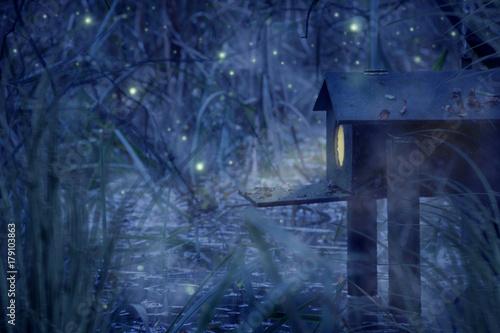 Fotografia, Obraz mystisches Haus