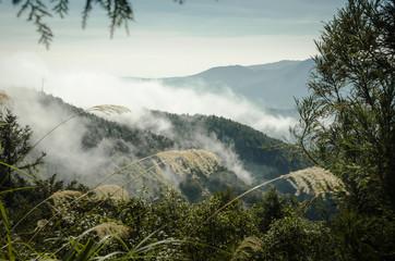 FototapetaHigh mountain in mist and cloud