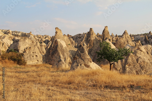 Garden Poster Natural Park Natural valley with volcanic tuff stone rocks in Goreme in Cappadocia, Turkey, at sunset.