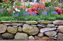 Dry Stone Wall And Colorful Ga...