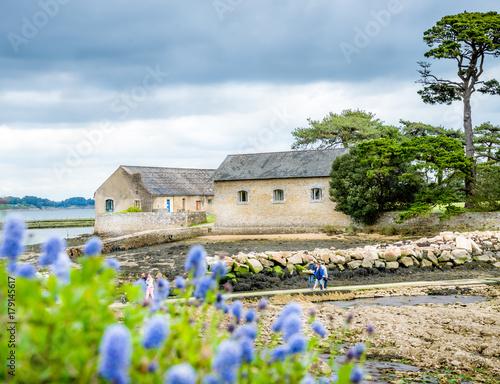 Spoed Foto op Canvas Zuid-Amerika land île de Berder à marée basse, Golfe du Morbihan, Bretagne, France
