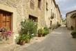 Plants pots in stone street in Monells, Girona, Spain