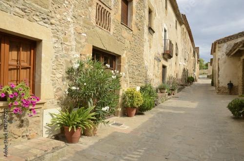 In de dag Mediterraans Europa Plants pots in stone street in Monells, Girona, Spain