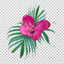 Vector Realistic Flower And Pa...