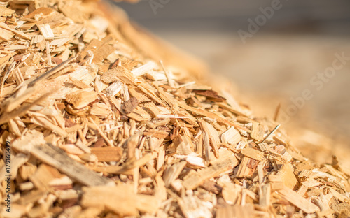 The slope of a pile of industrial wood chips.