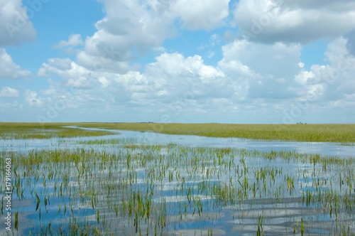 Fényképezés  Vast Landscape Vista of Florida Everglades Marshland under Blue Sky
