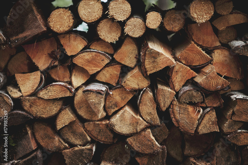 Stack of campfire wood
