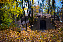 Old Cellar In The Autumn Forest