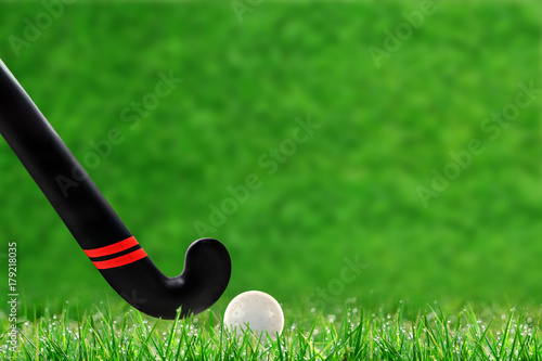 Field Hockey Stick and Ball on Grass With Copy Space